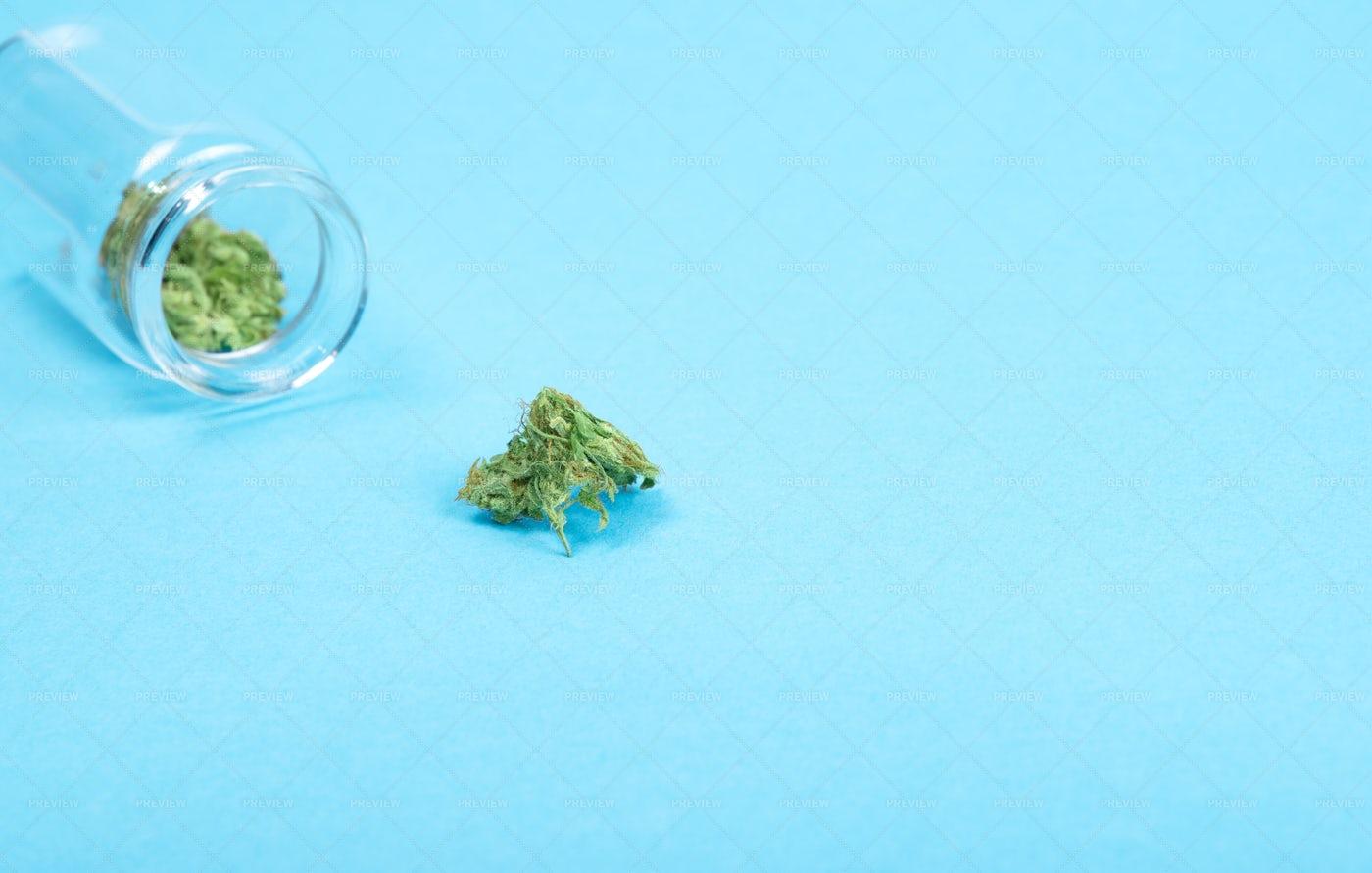 Medical Marijuana Buds: Stock Photos