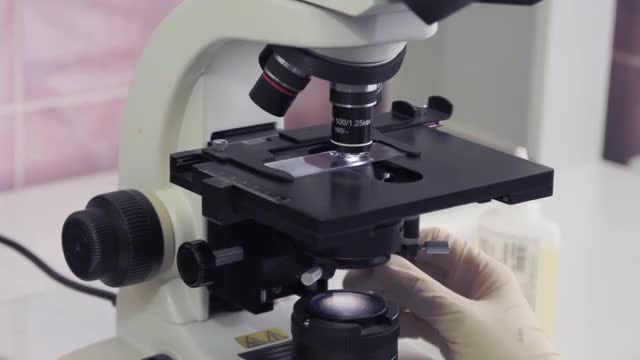 Scientist Adjusting Microscope Lens: Stock Video