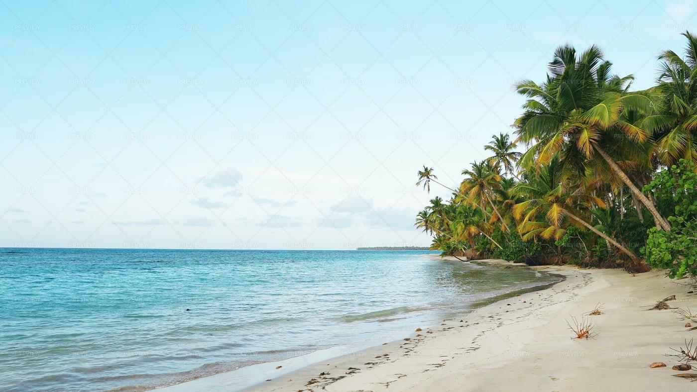 Punta Cana Beach: Stock Photos