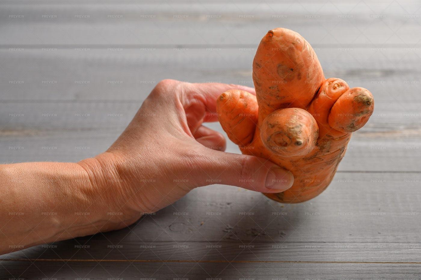 Holding An Ugly Carrot: Stock Photos