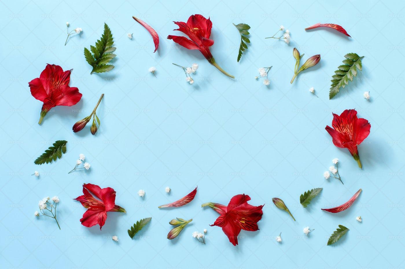 Flowers On Blue: Stock Photos