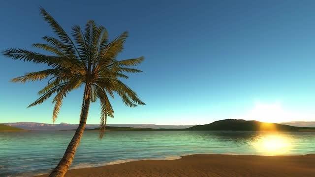 Sun Setting On Tropical Beach: Stock Motion Graphics