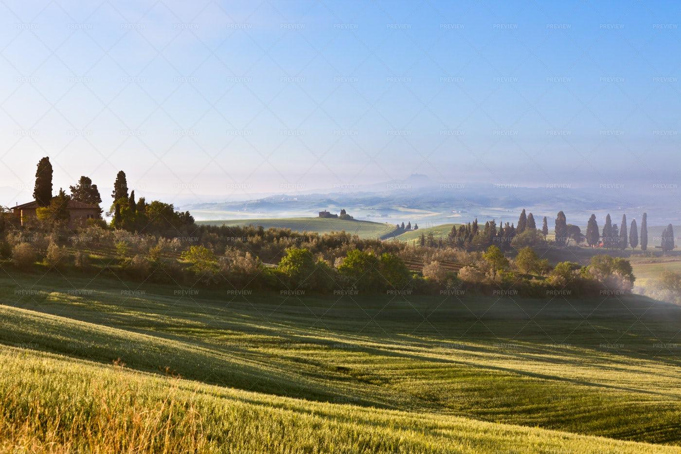 Morning Fog View: Stock Photos