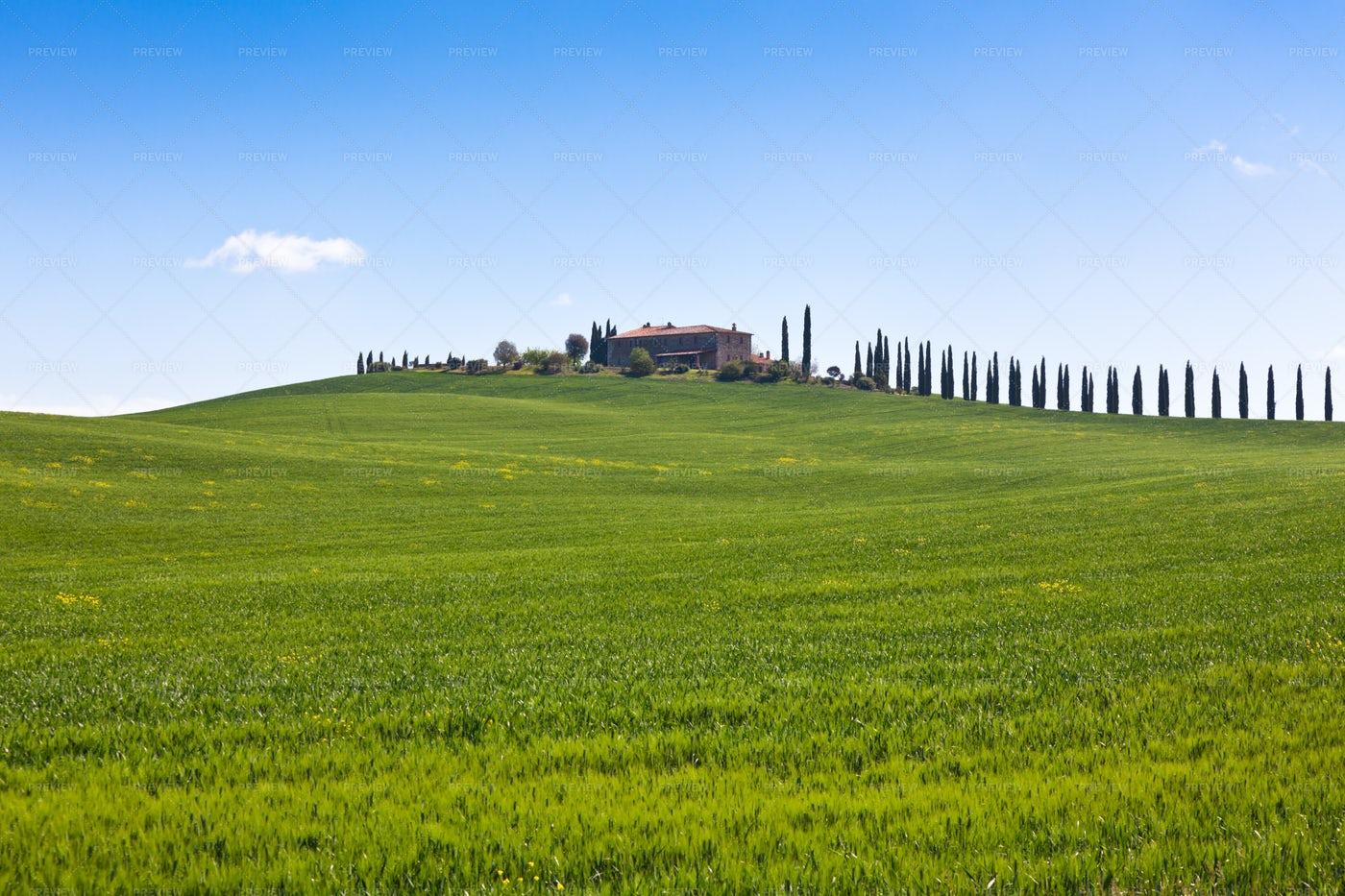 Tuscan Farmhouse Background: Stock Photos