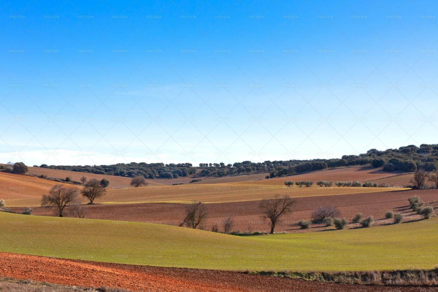 Spain Farmland: Stock Photos