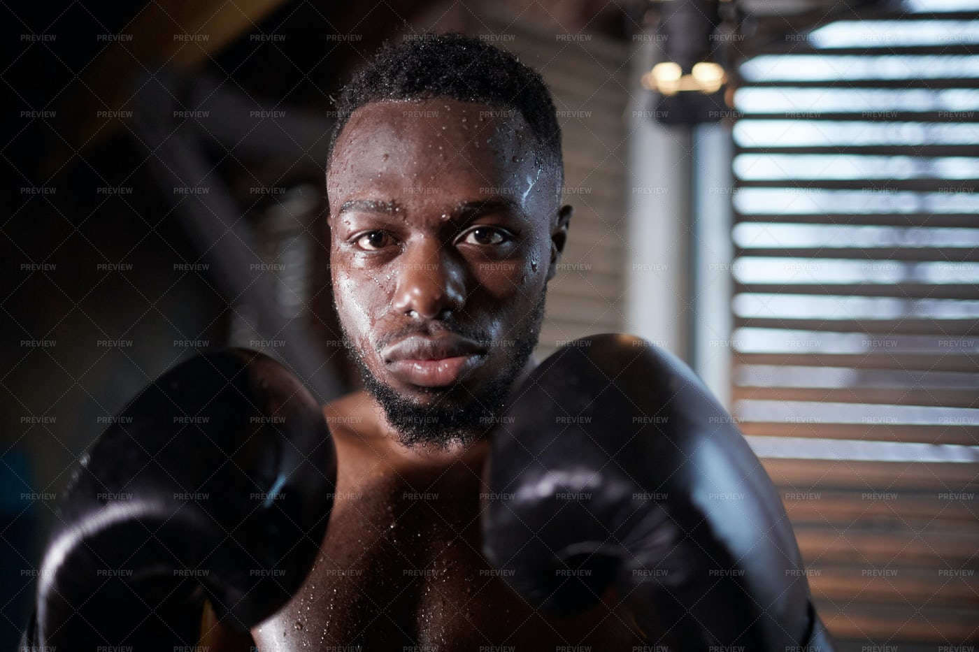 Sportsman In Boxing Gloves: Stock Photos
