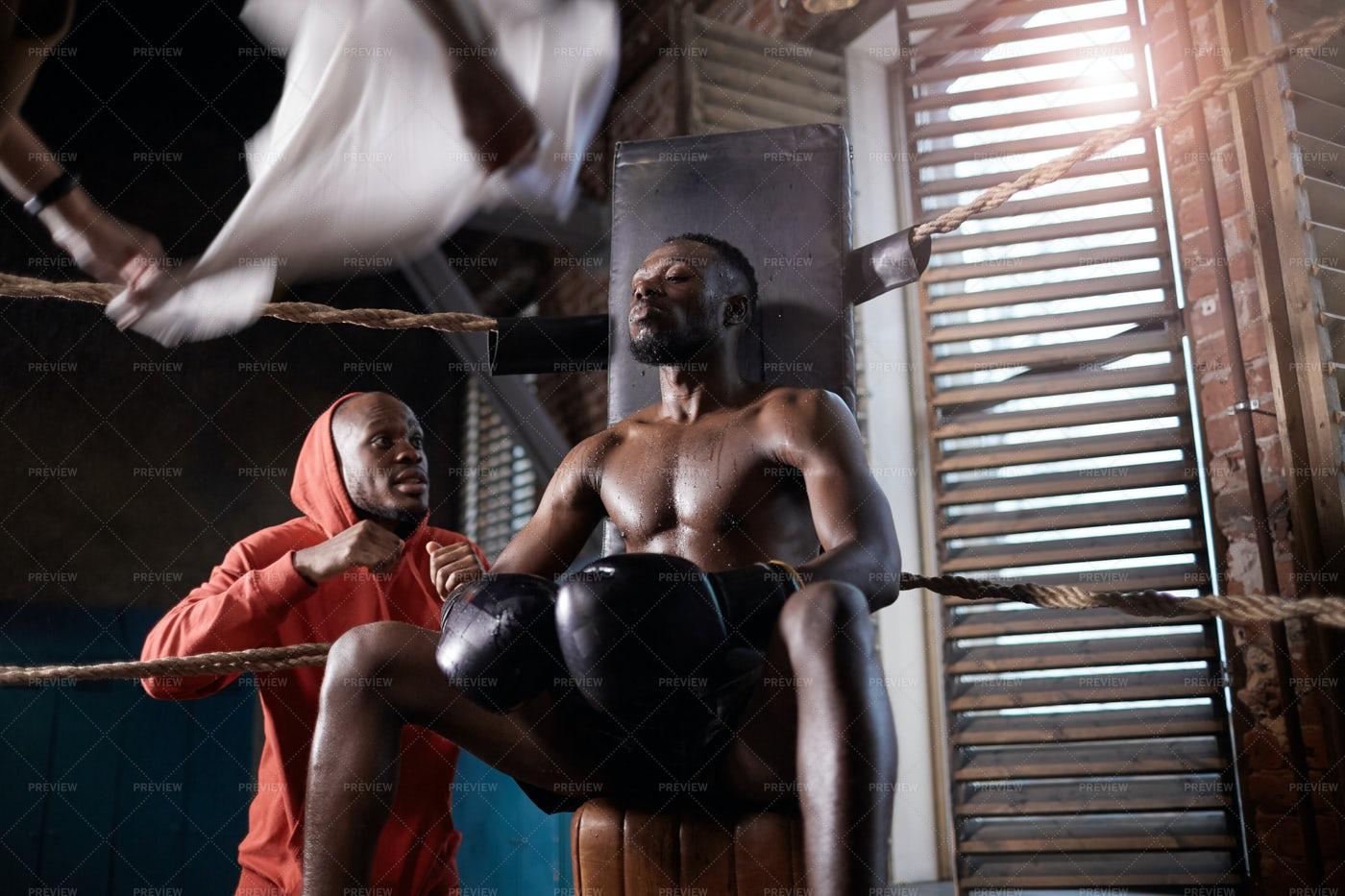 Trainer Coaching Boxer In Corner: Stock Photos