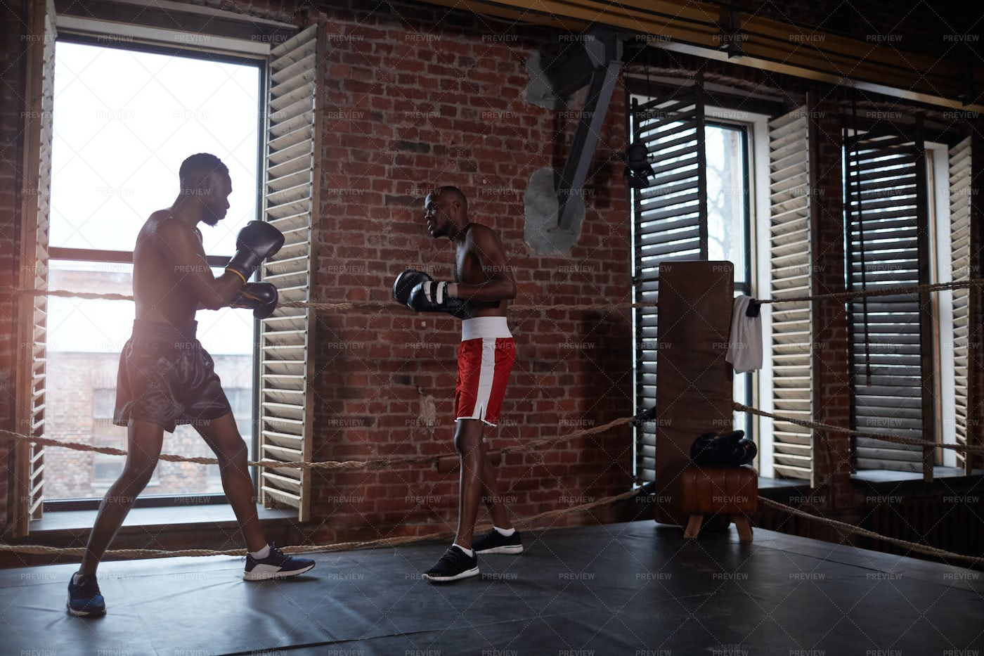 Boxers Sparring In Ring: Stock Photos