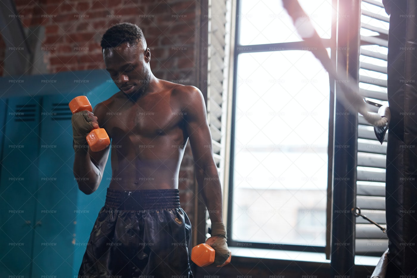 Boxer Training With Dumbbells: Stock Photos