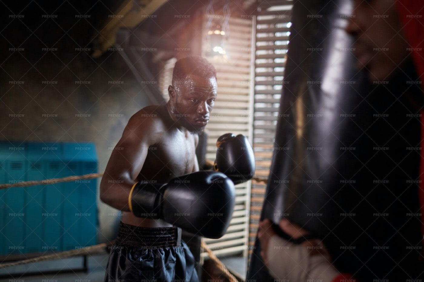 Boxer Training With Punching Bag: Stock Photos