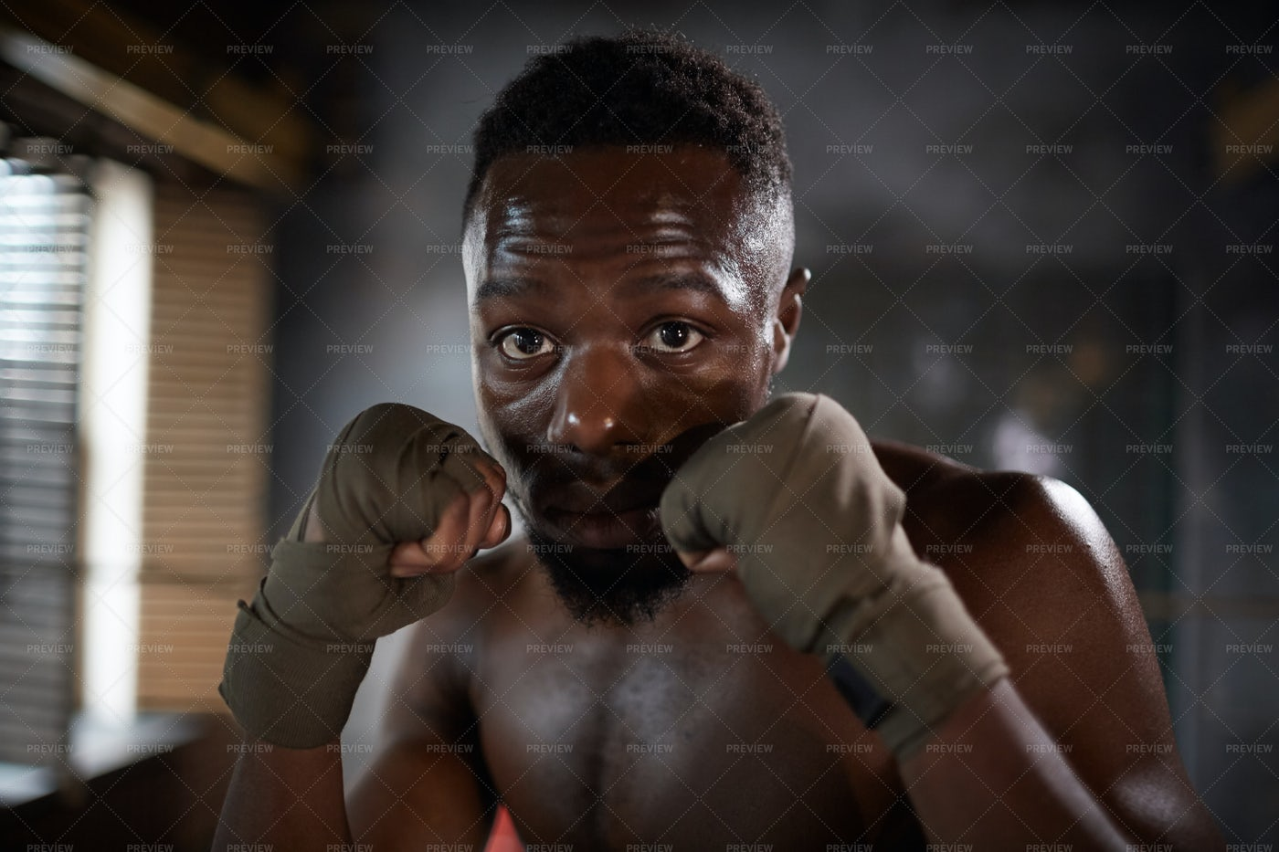 Boxing Stance Close-Up: Stock Photos
