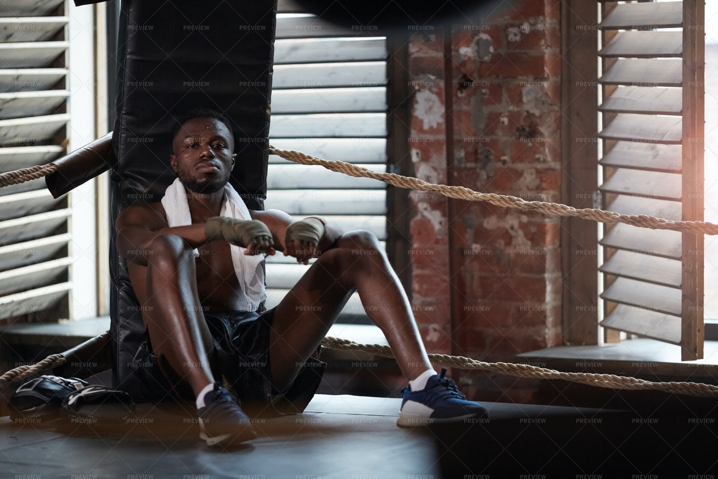 Seated Boxer Rests While Training: Stock Photos