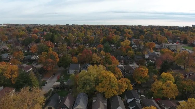 Aerial View Of Residential Neighborhood: Stock Video