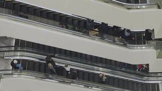 Shoppers On Two Escalators: Stock Video