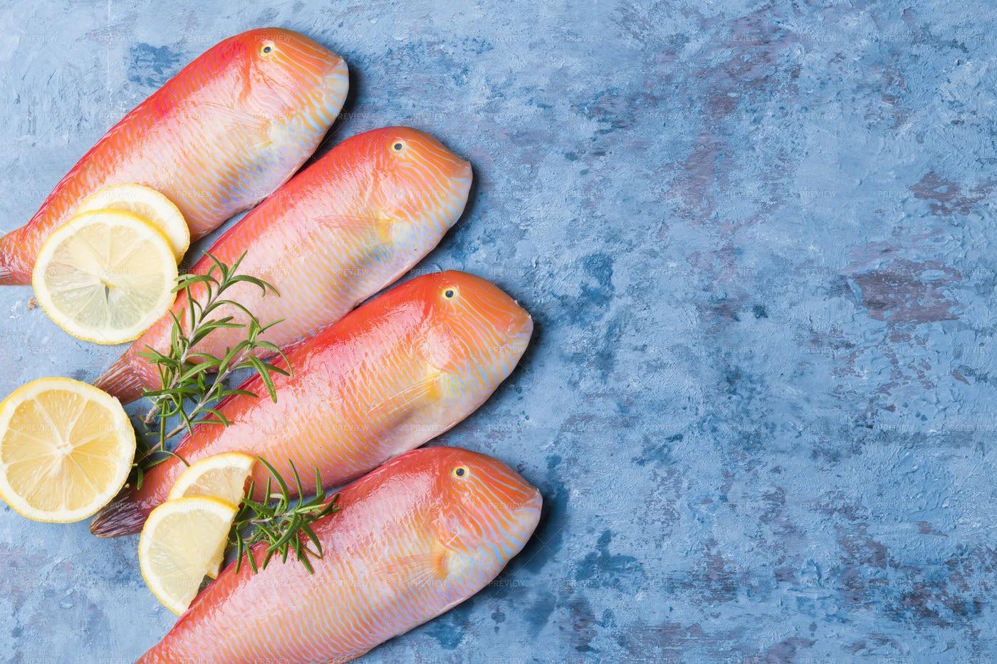 Red Sea Fish: Stock Photos