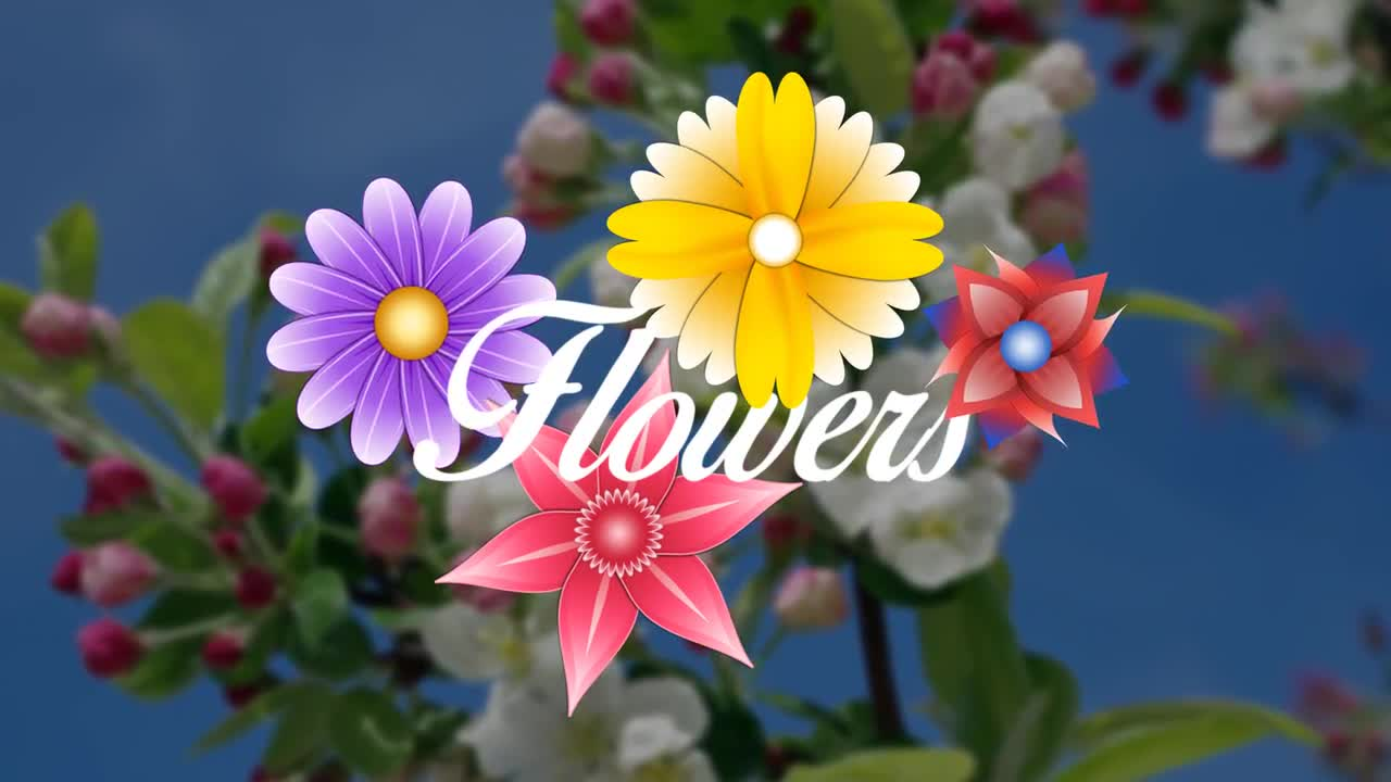 Animated Flowers Pack - Motion Graphics 78447