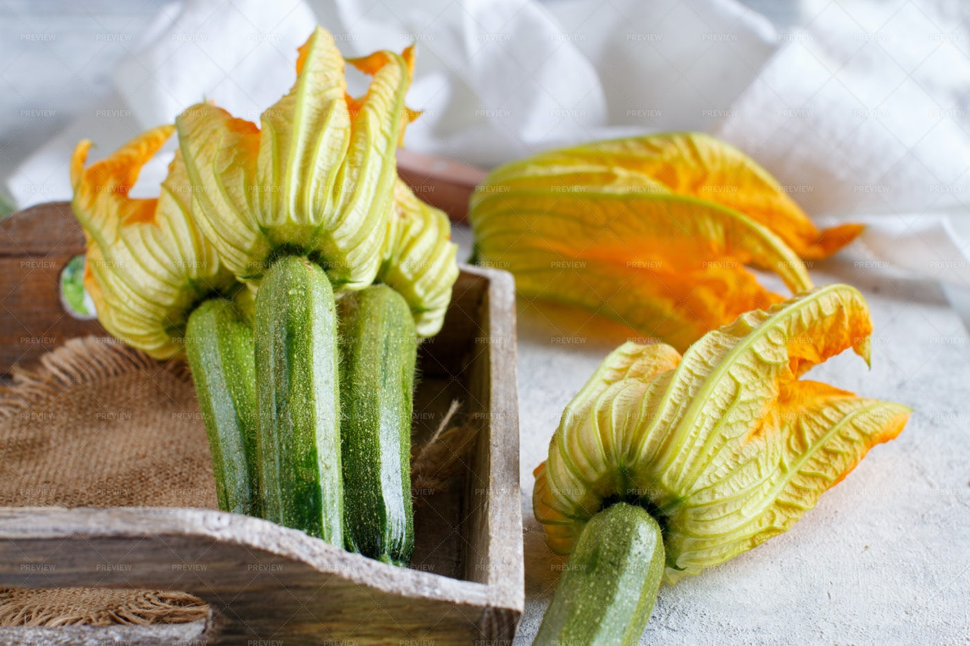 Young Zucchini With Flowers: Stock Photos