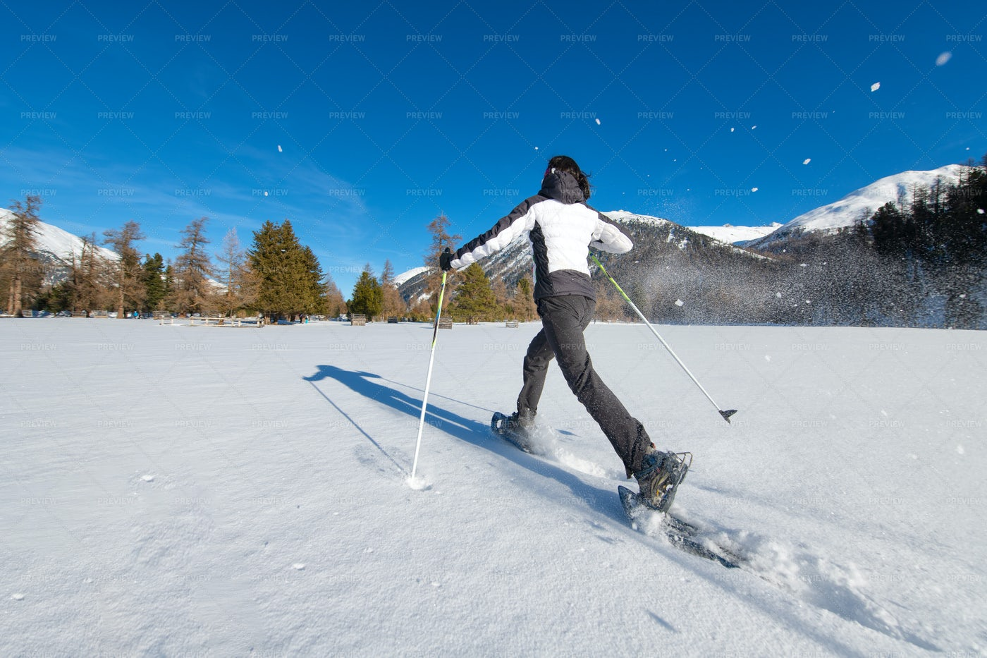Dynamic Foot Lifter Snowshoes: Stock Photos