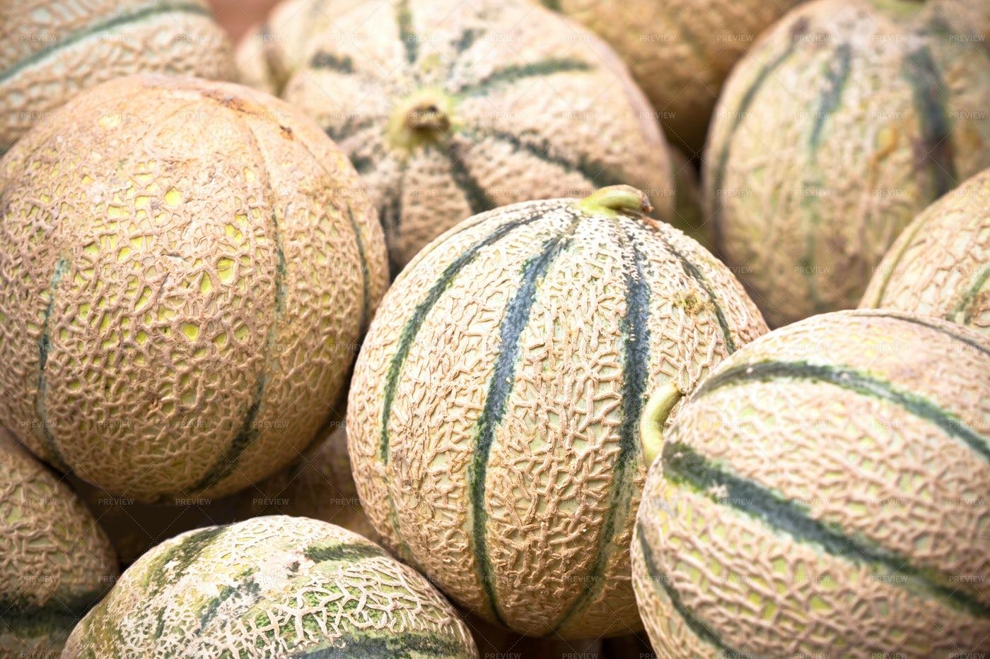 Fresh Melons: Stock Photos