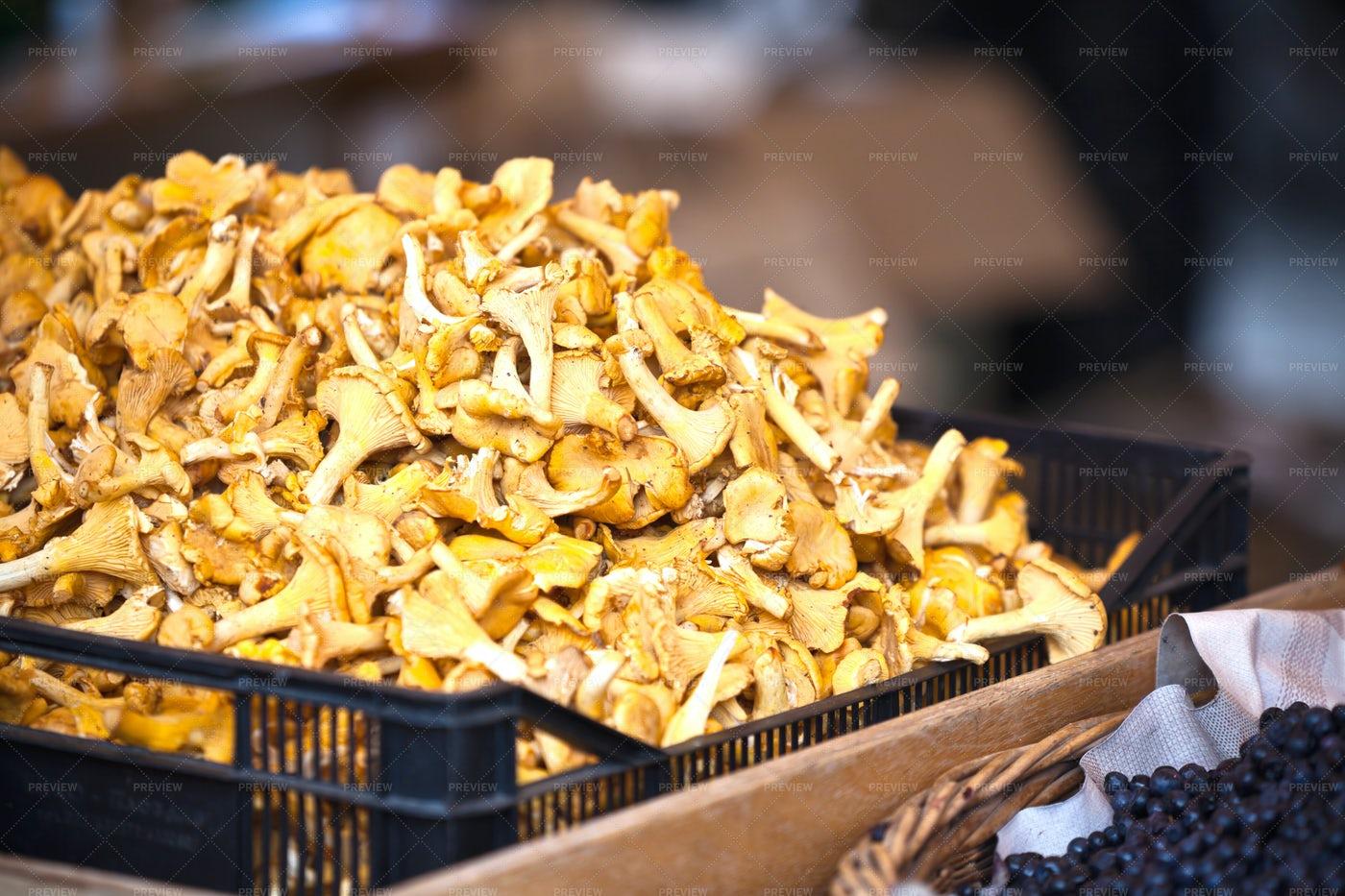 Chanterelles In A Market: Stock Photos