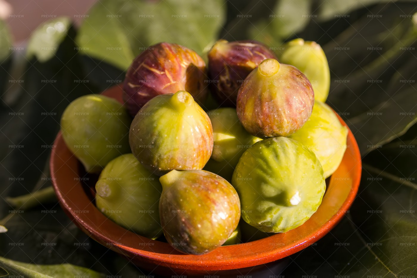 Fresh Figs In Sunlight: Stock Photos