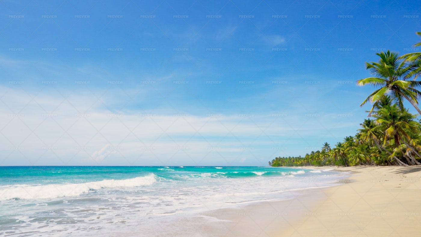 Atlantic Ocean Shore: Stock Photos