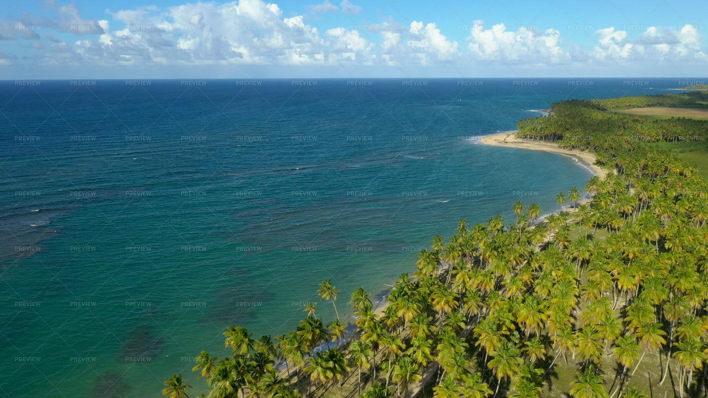 Miches Tropical Coast: Stock Photos