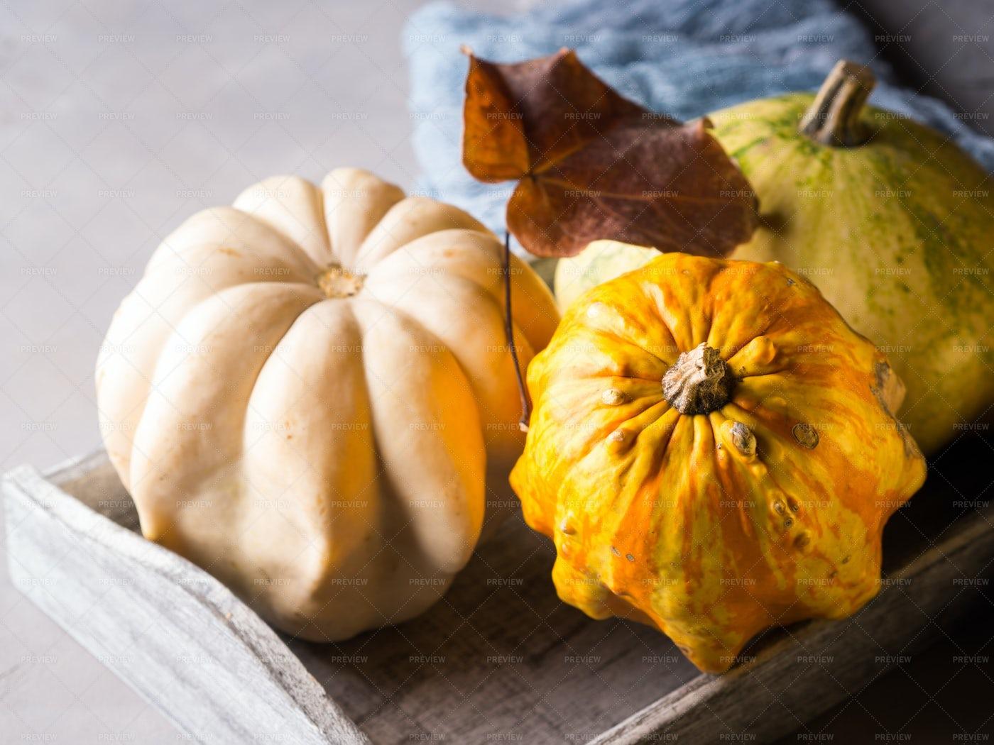 Autumn Halloween Pumpkins: Stock Photos