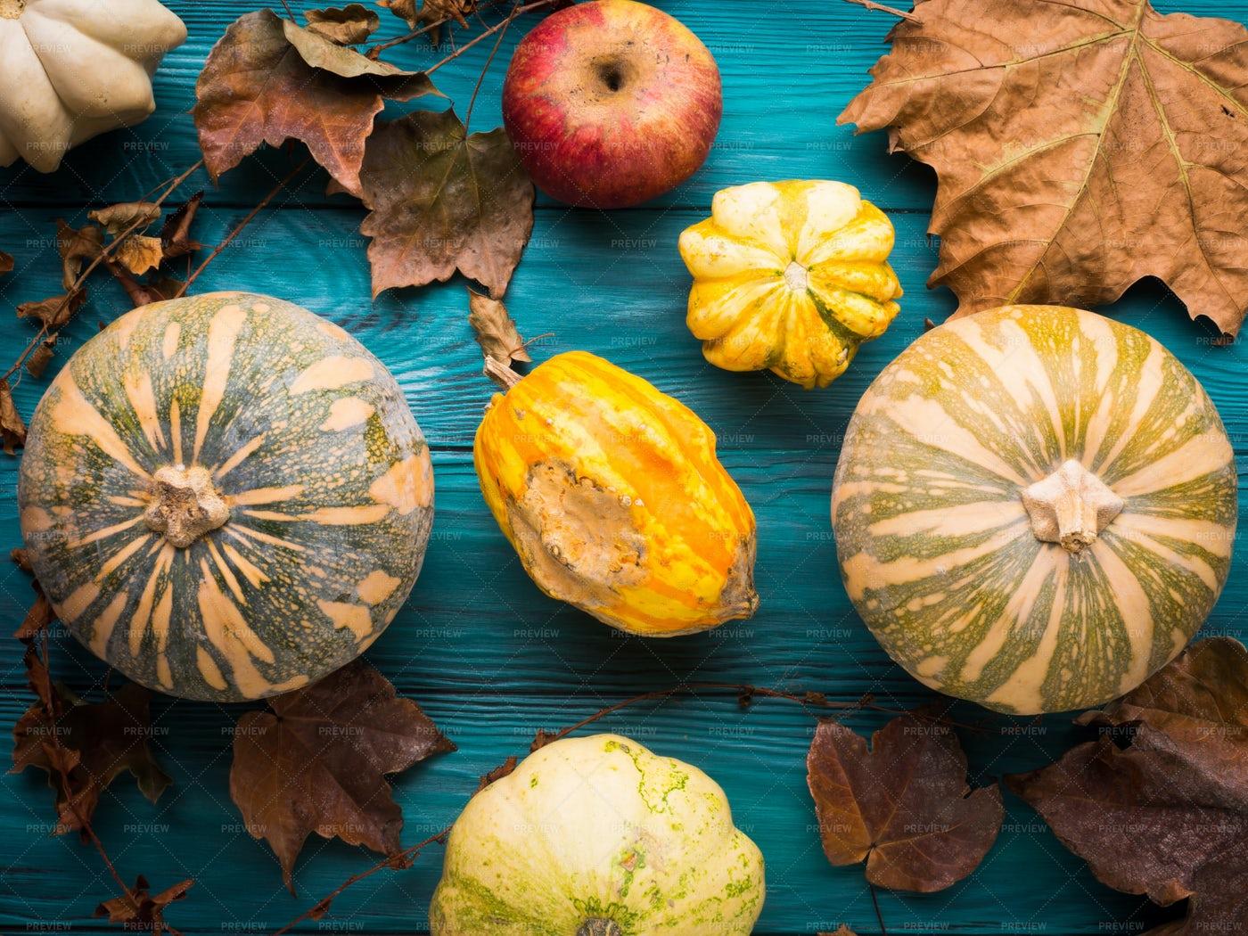 Autumn Harvest Background: Stock Photos