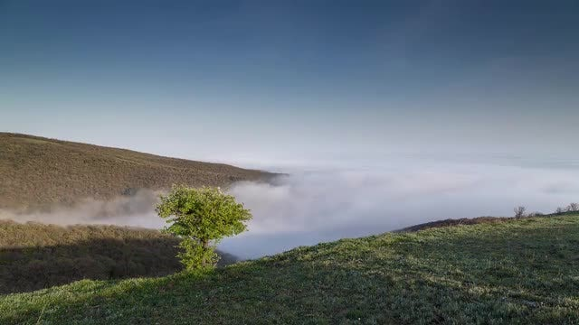 White Fog Over The Hill: Stock Video