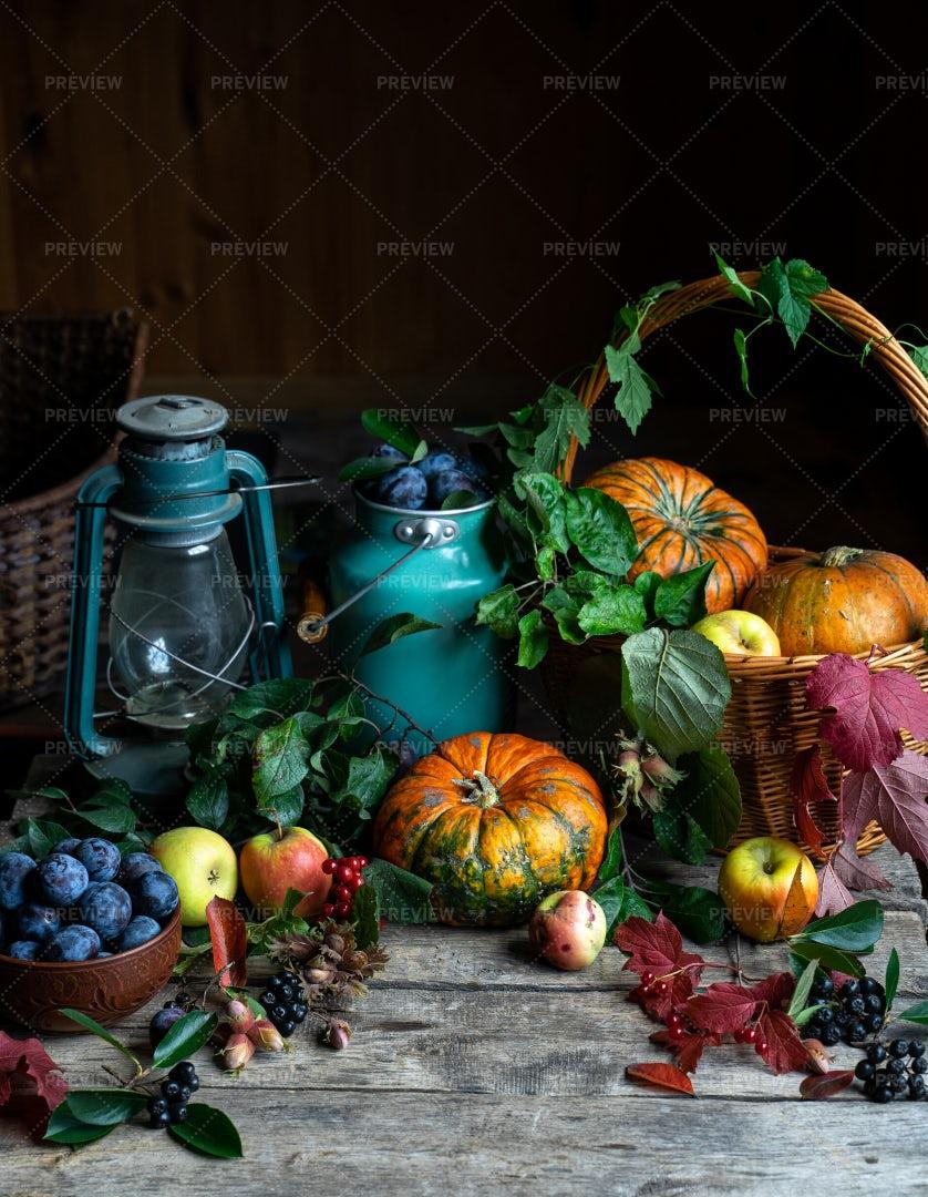 Thanksgiving Harvest: Stock Photos