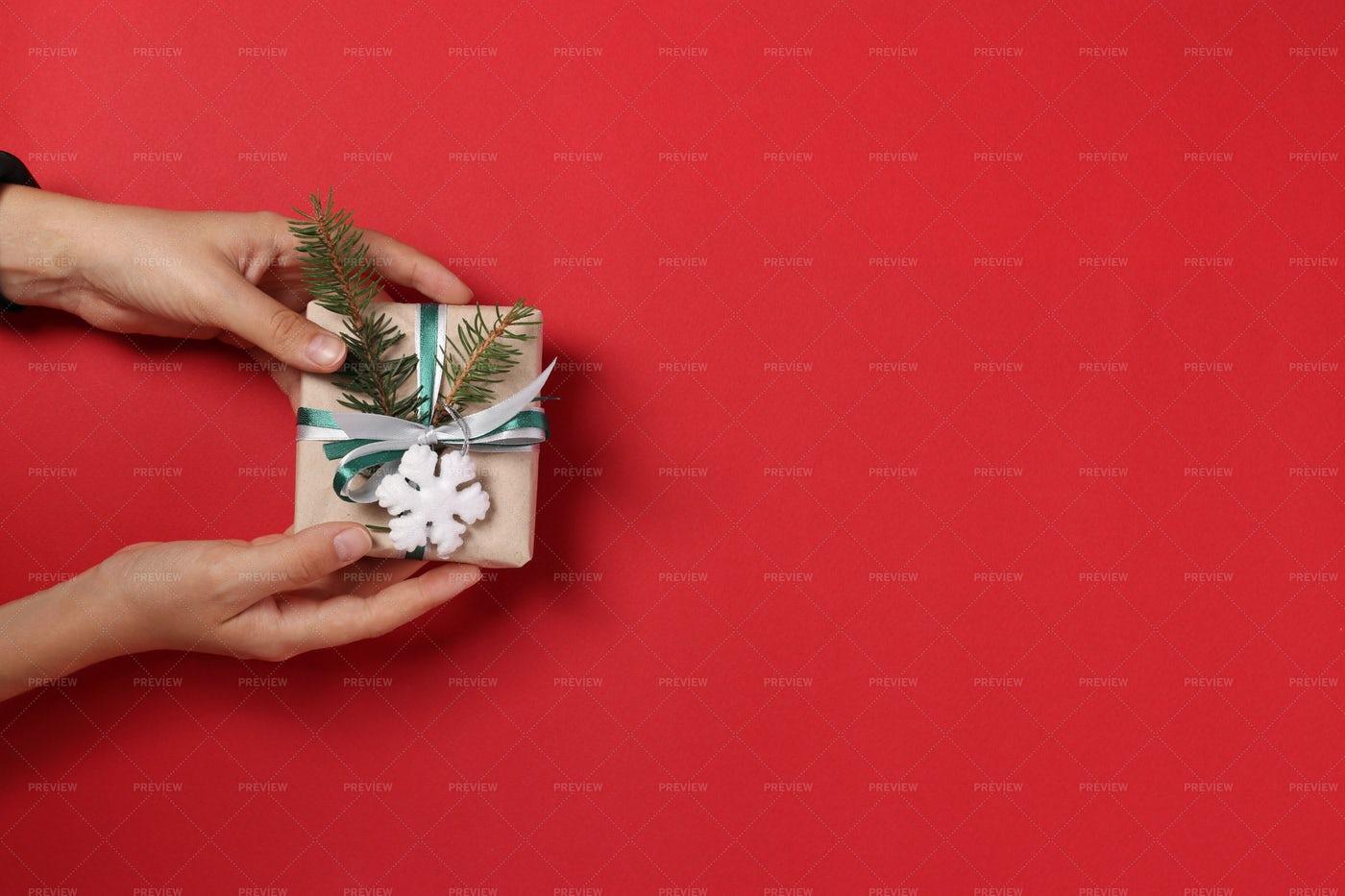 Woman Holding A Gift Box: Stock Photos
