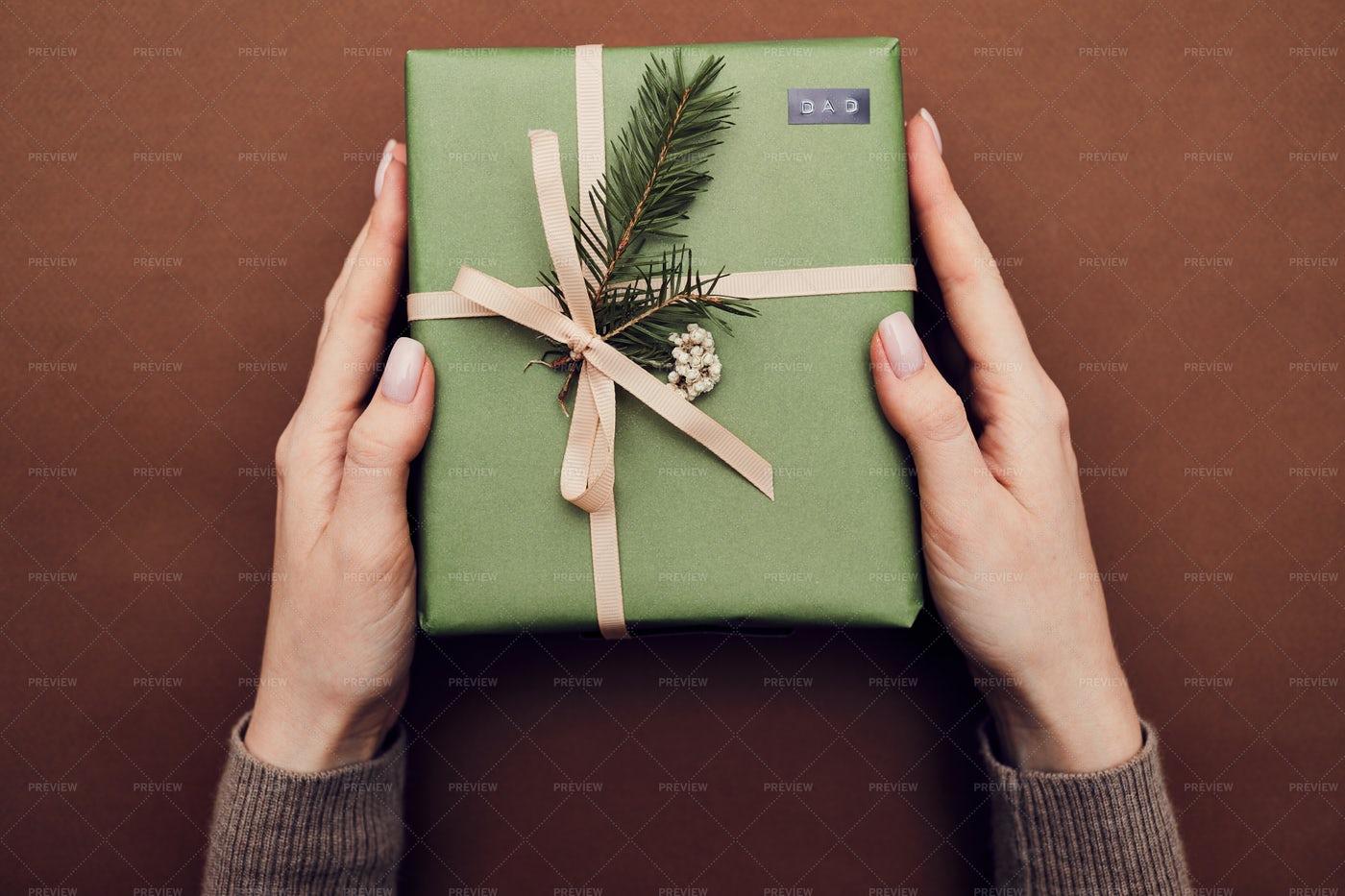 Holding A Green Present: Stock Photos
