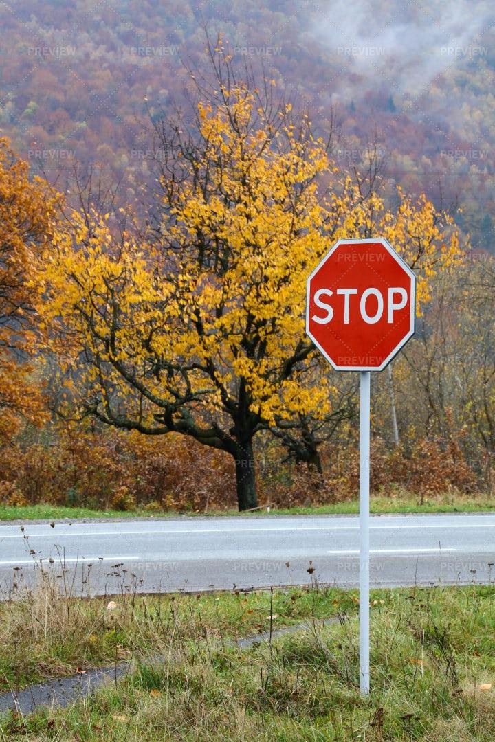 Road STOP Sign: Stock Photos