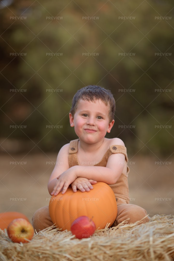 Boy On Pumpkin Patch: Stock Photos