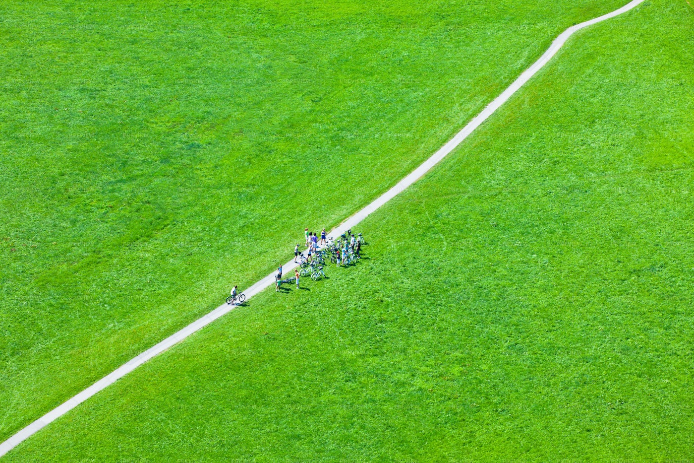Footpath In Green Field: Stock Photos