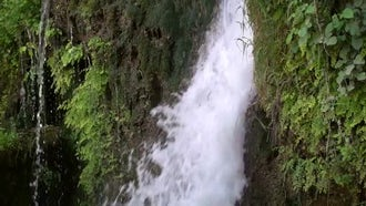 Tall Waterfall In The Jungle: Stock Footage