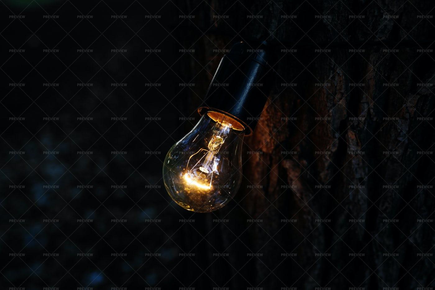 Incandescent Light Bulb: Stock Photos