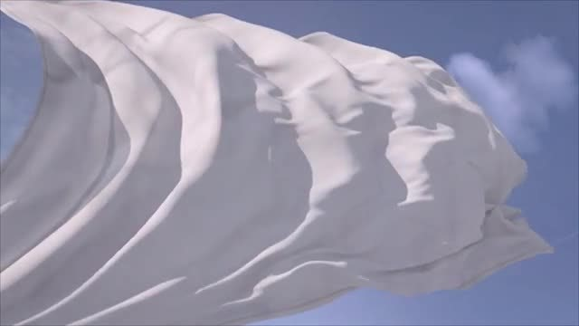White Flag: Stock Motion Graphics