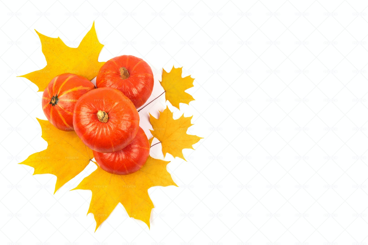 Pumpkin And Yellow Leaves: Stock Photos