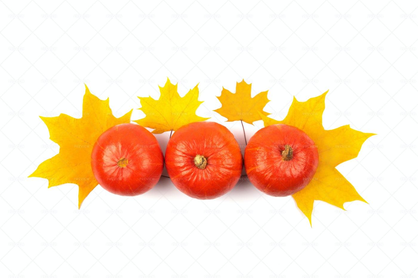 Orange Autumn Pumpkins: Stock Photos