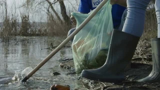 Volunteers Cleaning Up A Lake: Stock Video