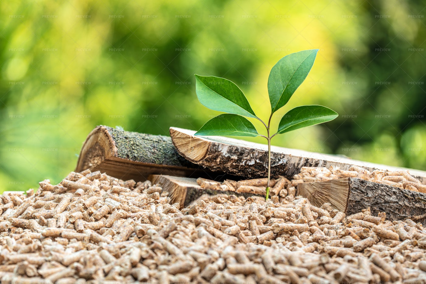 Eco Wood Pellets With Seedling: Stock Photos
