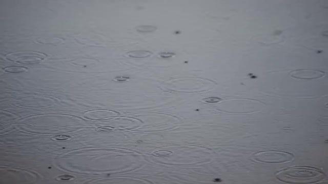 Rain Drops: Stock Video