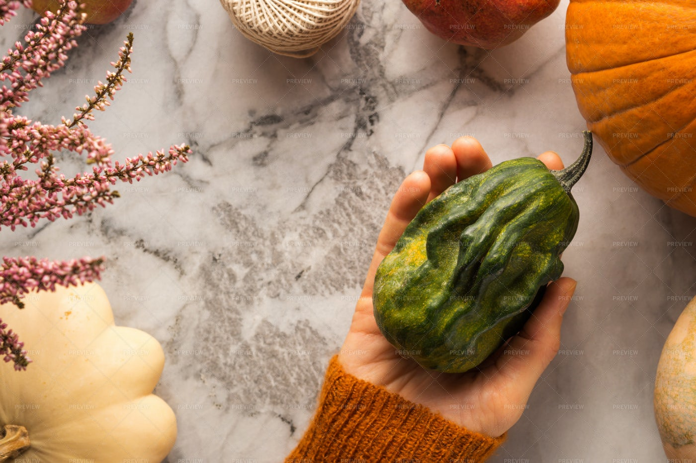Holding Autumn Vegetables: Stock Photos