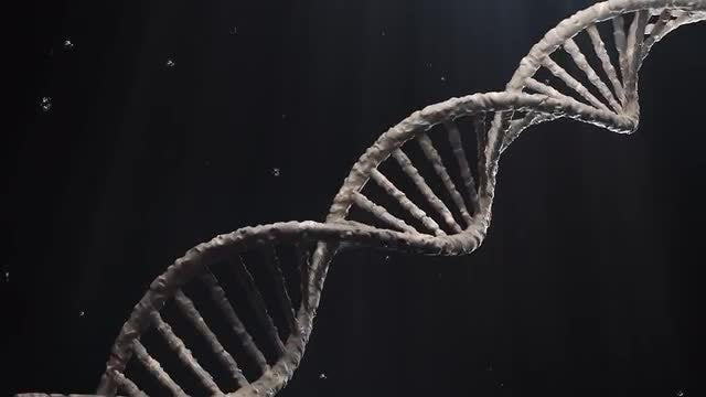 DNA Molecular Structure Rotation Loop: Stock Motion Graphics