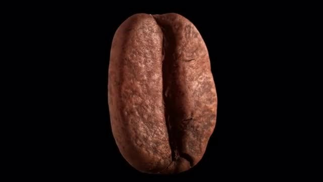 Coffee Beans Rotating: Stock Video