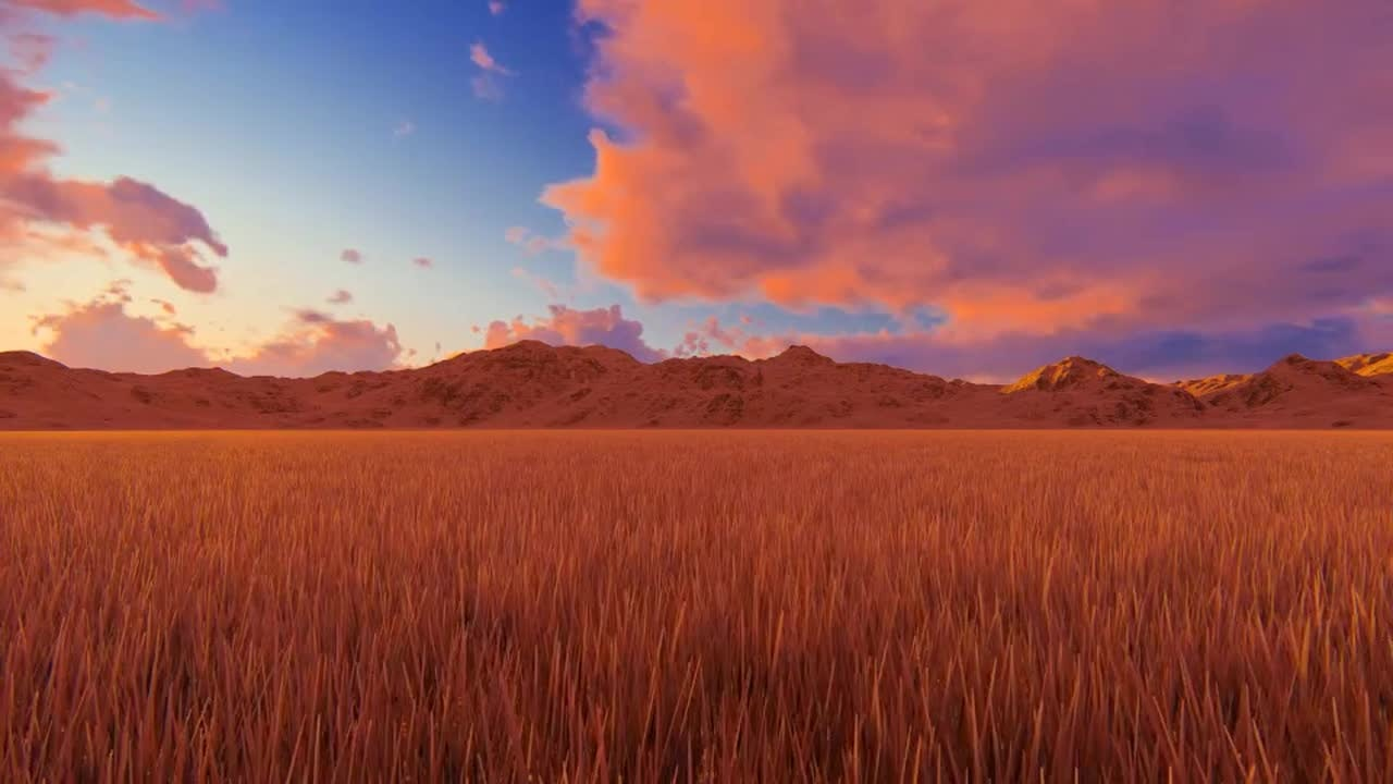 grass field sunrise. Interesting Field Grass Field Sunrise Beautiful Field Of Grass At Sunrise Stock Motion  Graphics On To