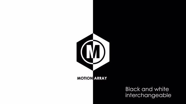 Black and White Minimal Logo Animations: After Effects Templates