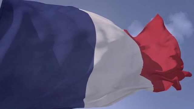 French Flag: Stock Motion Graphics